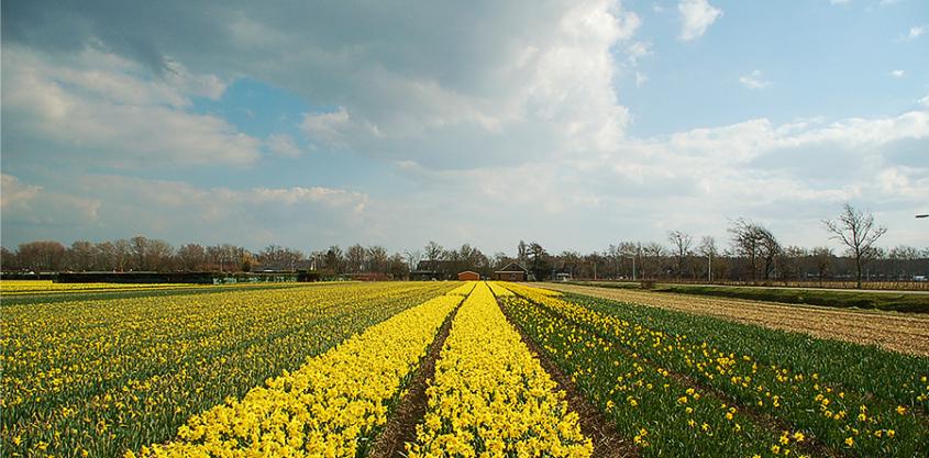 Winnaar weekend Noordwijkerhout